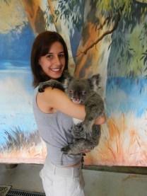 abracar-coala